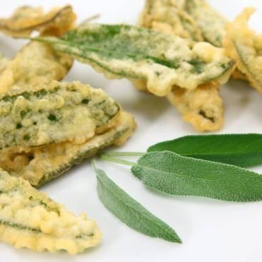 Salvia-fritta