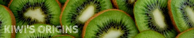 Kiwi origins_Popsicle Society