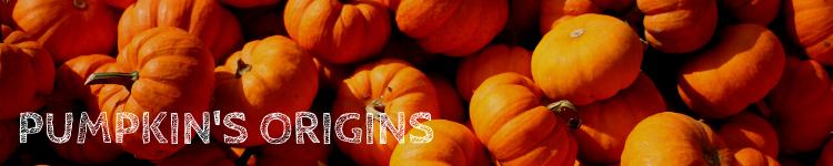 Pumpkin origins_Popsicle Society