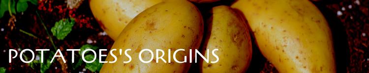 Potatoes origins_Popsicle Society