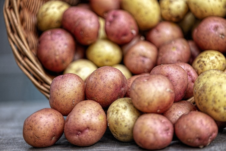 Potatoes_Popsicle Society