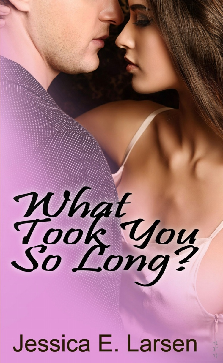What took you so long_Jessica E Larsen book_Popsicle Society