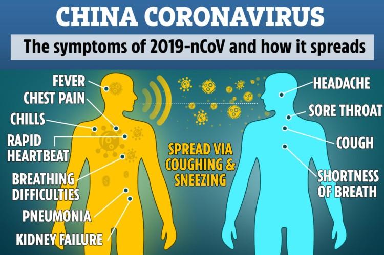 DD-COMPOSITE-CORONAVIRUS-GRAPHIC-2
