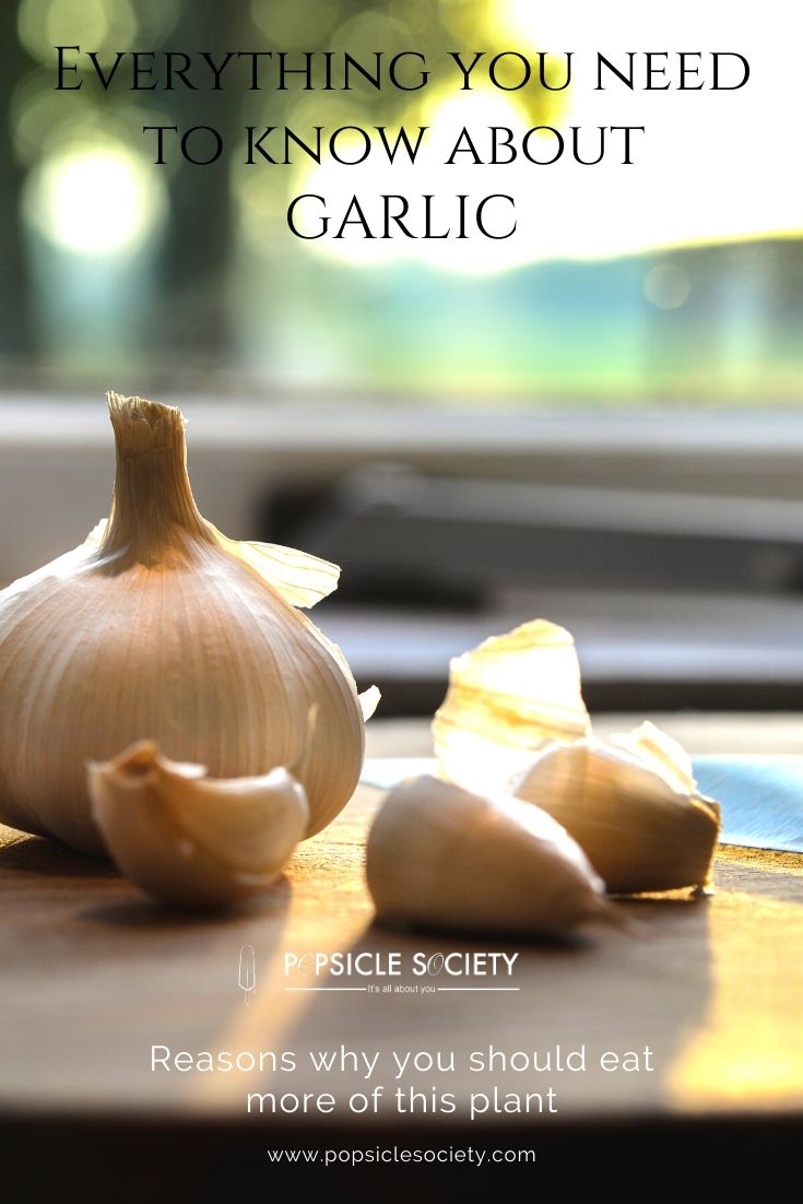 Everything you need to know about garlic_Popsicle Society