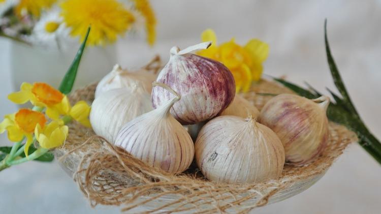 Garlic in kitchen_Popsicle Society