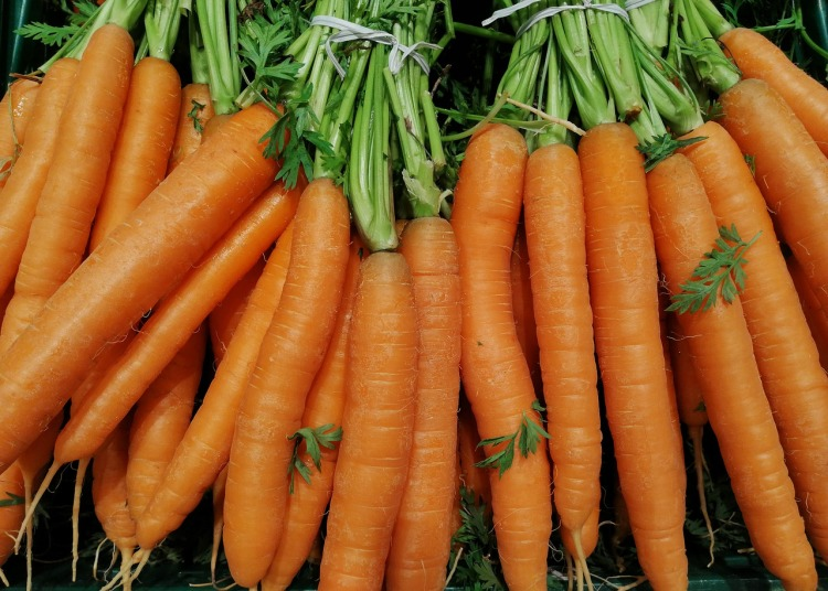 Why carrots are orange_Popsicle Society