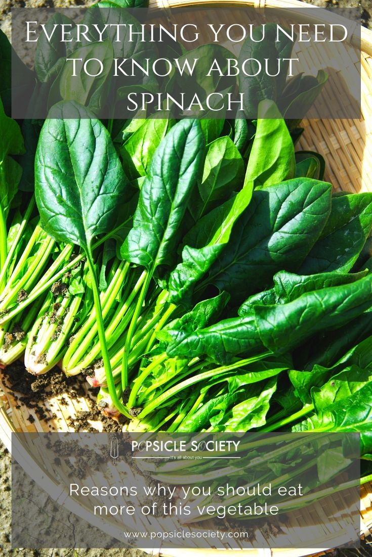 Everything you need to know about spinach_Popsicle Society